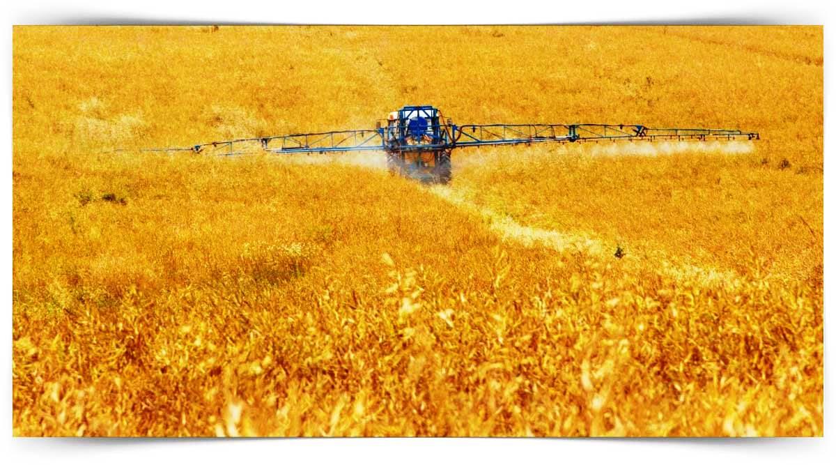 Bitkisel Üretimde İyi Tarım Uygulamaları Kursu MEB Onaylı