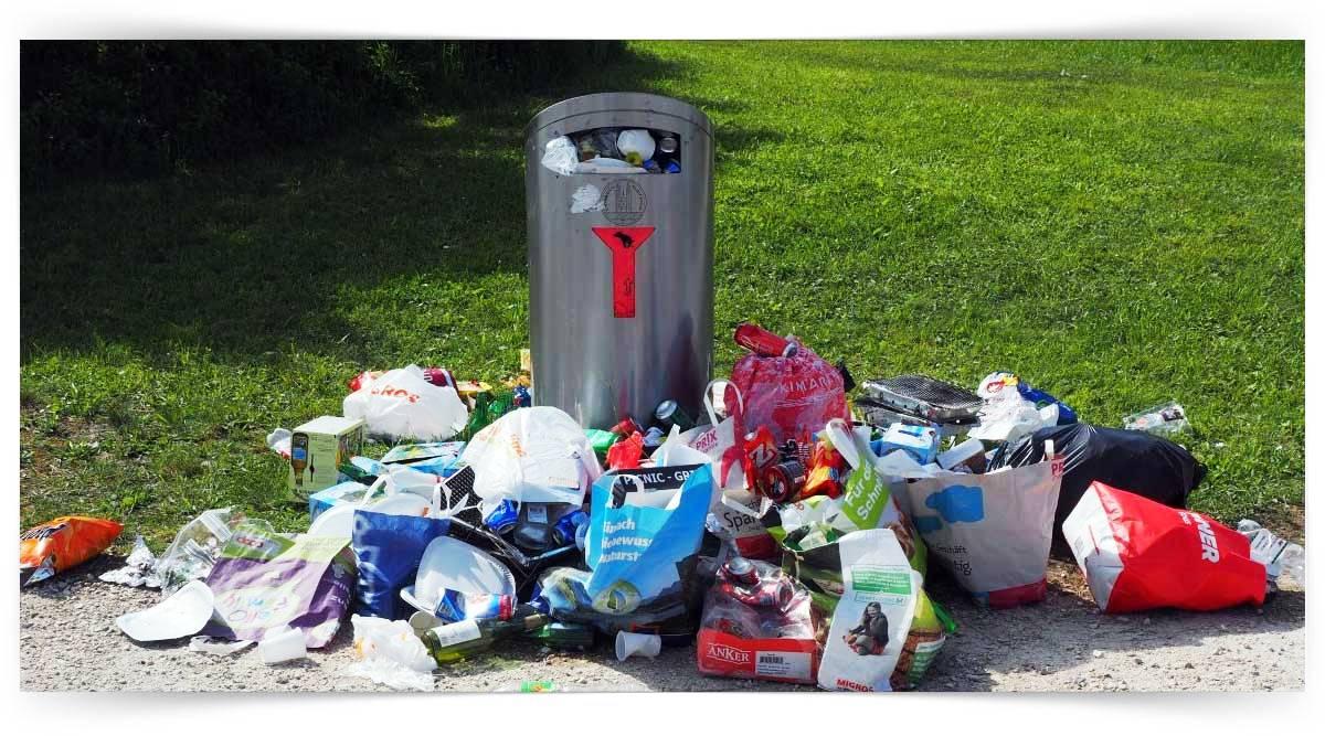 Çevre Kirleticilerinin Etkileri Kursu MEB Onaylı