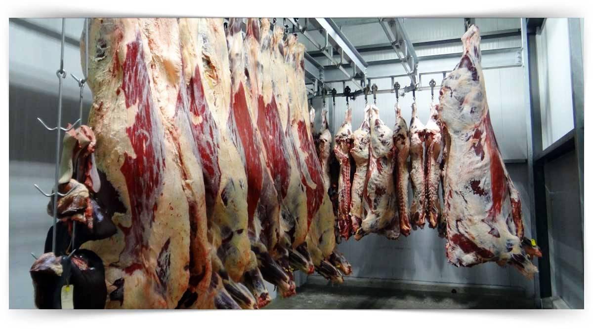 Et İşleme Ve Reyon Elemanı Kursu MEB Onaylı