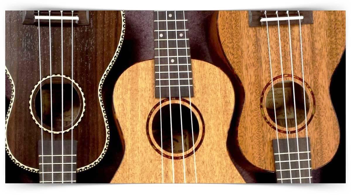 Klasik Gitar Yapımcısı Kursu MEB Onaylı