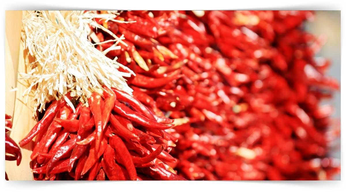 Meyvelerinden Faydalanılan İlaç Ve Baharat Bitkileri Yetiştiriciliği Kursu MEB Onaylı