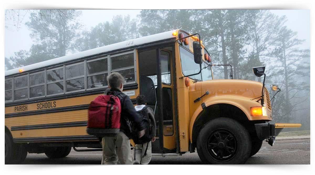Okul Servis Araç Sürücüleri Kursu MEB Onaylı