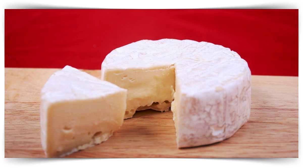 Peynir Üretimi Kursu MEB Onaylı