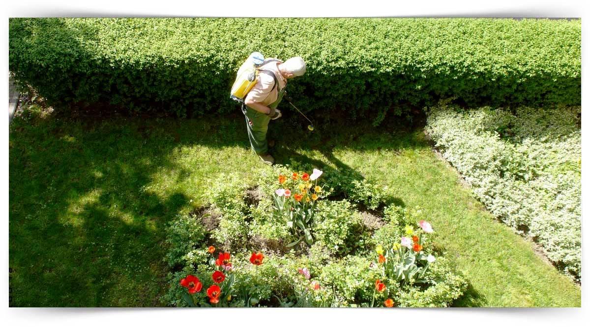 Peyzaj Bahçıvanlığı Kursu MEB Onaylı