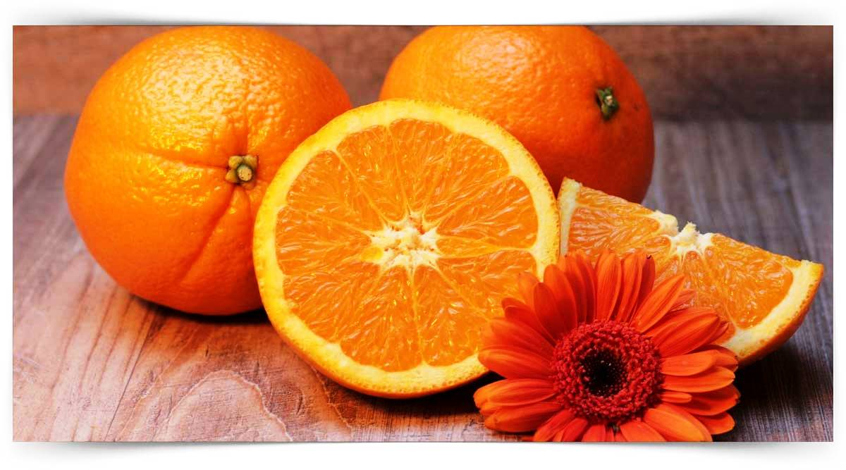 Portakal Yetiştiriciliği Kursu MEB Onaylı