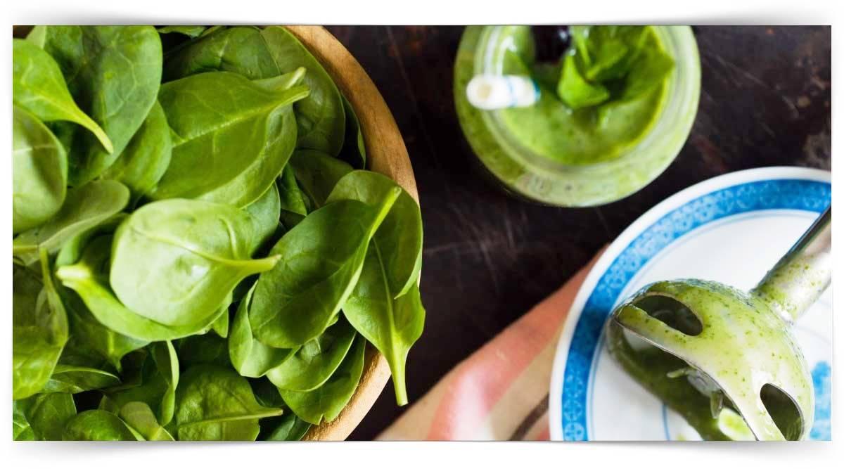 Sağlıklı Beslenme Kursu MEB Onaylı