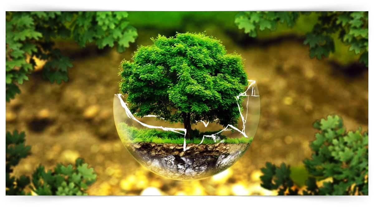 Tehlikeli Ve Çok Tehlikeli İşlerde Bitki Koruma Ve Bitki Besleme Ürünlerinde Formülasyon Ve Paketleme Kursu MEB Onaylı