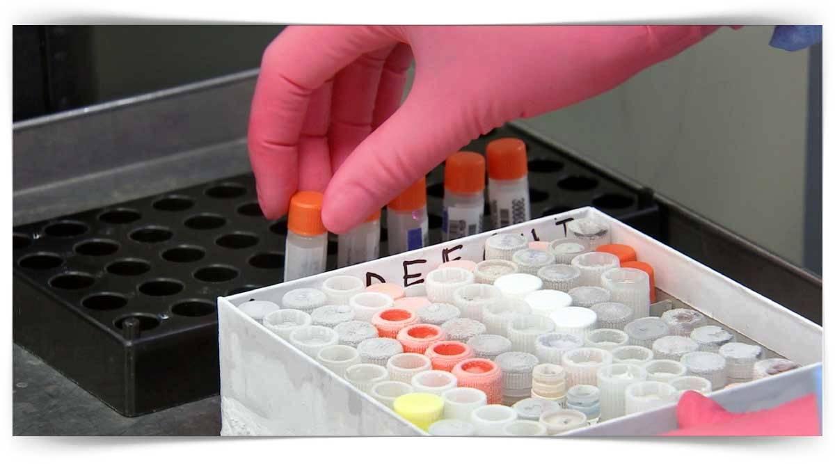 Tehlikeli Ve Çok Tehlikeli İşlerde Termik Santral Laboratuarcılığı Kursu MEB Onaylı