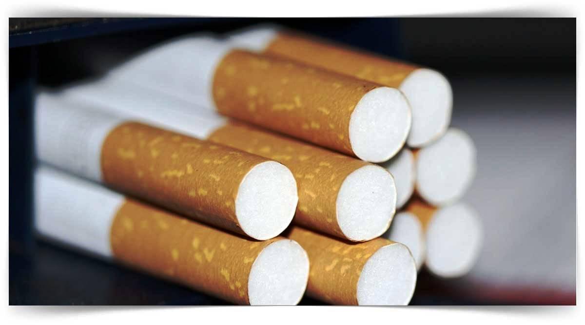 Tehlikeli Ve Çok Tehlikeli İşlerde Tütün İşleme Kursu MEB Onaylı