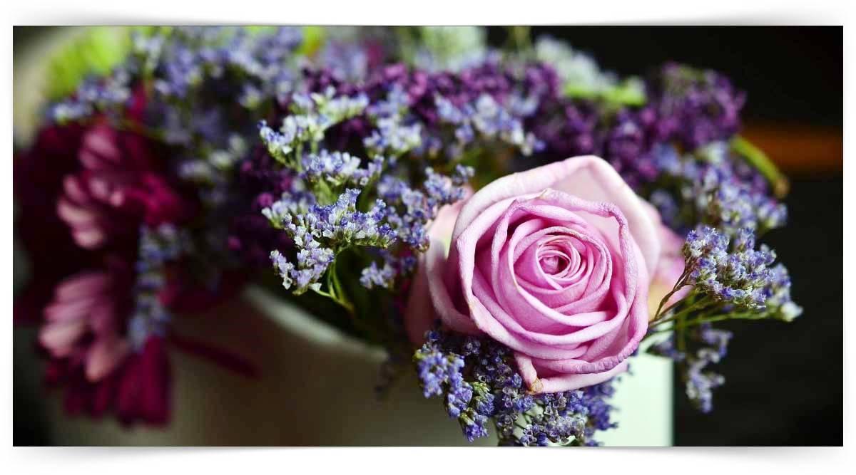 Temel Kesme Çiçek Yetiştiriciliği Kursu MEB Onaylı