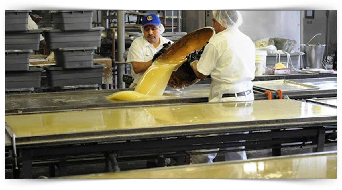 Tereyağı Üretim Elemanı Kursu MEB Onaylı